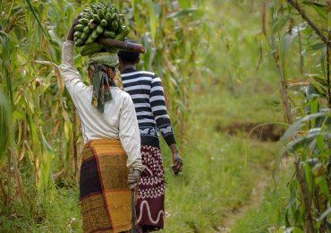 « Je continuerai à prier en son nom » : En Ouganda, une femme passée à tabac pour avoir prié trop fort